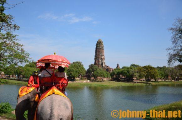 アユタヤ遺跡を巡る象