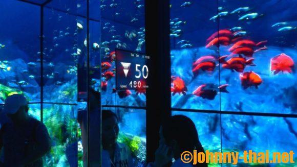 マハナコン・スカイウォーク展望台のエレベーター